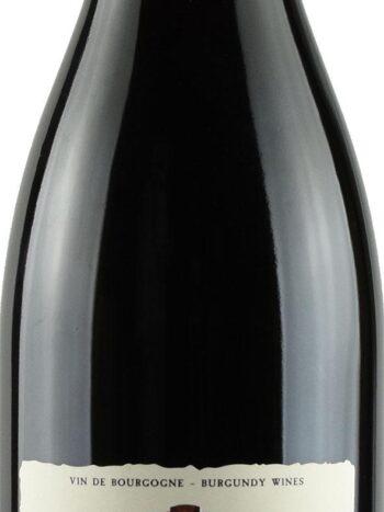 vini vino dampt bourgogne epineuil